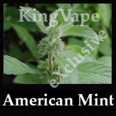 American Mint DIwhY 30ml