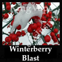 Winterberry Blast 10ml NICOTINE FREE