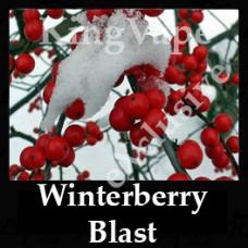 Winterberry Blast 10ml NICOTINE FREE